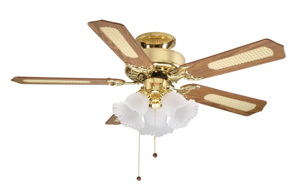 "Eurofans Belaire 42"" Polished Brass Ceiling Fan +  Light 110330"